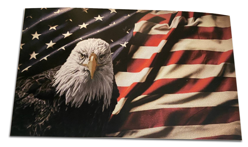 American Flag and Bald Eagle Decal - 5